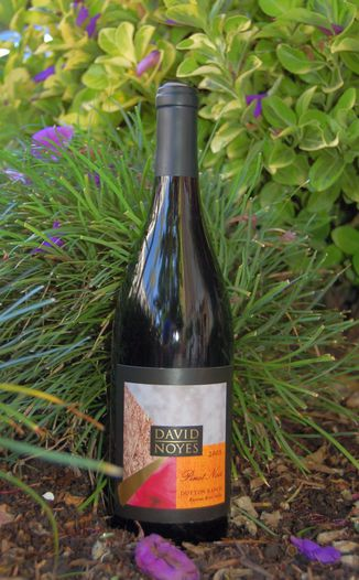 David Noyes Wines 2005 Russian River Valley Pinot Noir 750ml Wine Bottle