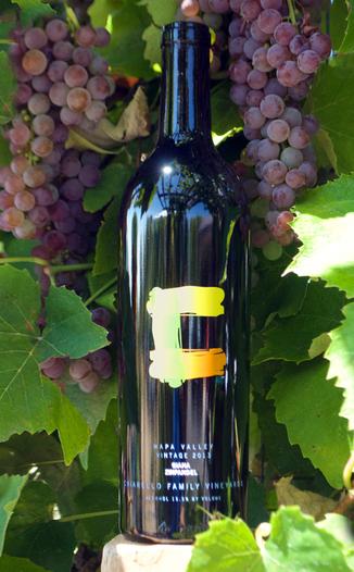 Chiarello Family Vineyards 2013 Giana Napa Valley Zinfandel 750ml Wine Bottle