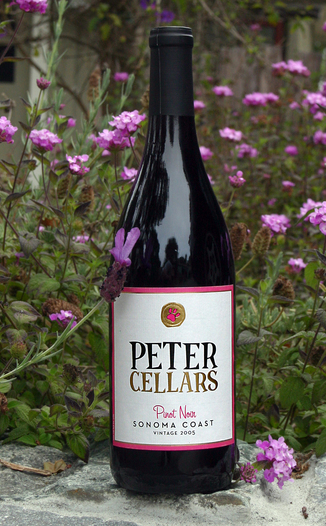 Peter Cellars 2005 Pinot Noir 750ml Wine Bottle