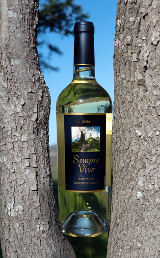 Romeo Vineyards 2014 Sempre Vive Napa Valley Sauvignon Blanc 750ml Wine Bottle