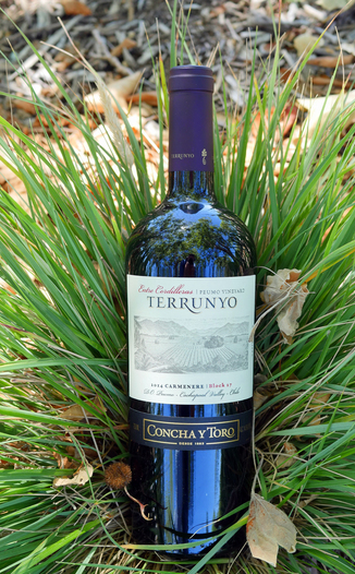 Concha y Toro 2014 Cachapoal Valley Terrunyo Peumo Carmenere 750ml Wine Bottle