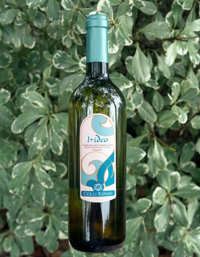 Cantina Colli Ripani 2013 Irideo Verdicchio dei Castelli di Jesi D.O.C. 750ml Wine Bottle