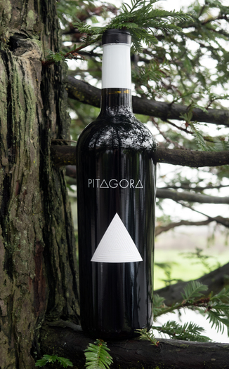Francis Ford Coppola Winery 2013 Pitagora Red Blend 750ml Wine Bottle