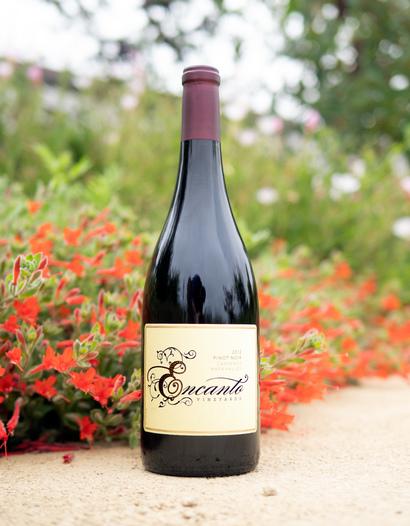 Encanto Vineyards 2012 Carneros Napa Valley Pinot Noir 750ml Wine Bottle