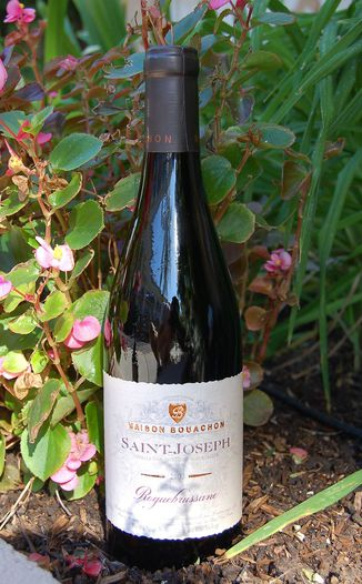 Skalli Grand Vin du Rhone 2003 Roquebrussane - Saint Joseph 750ml Wine Bottle