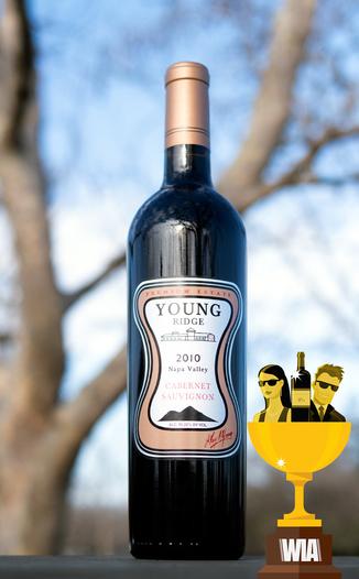 Young Ridge 2010 Premium Estate Napa Valley Cabernet Sauvignon 750ml Wine Bottle