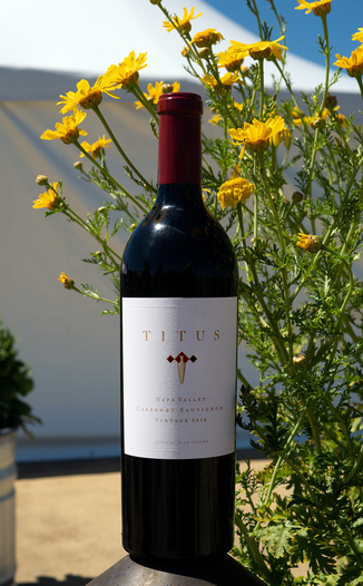 Titus Vineyards 2016 Napa Valley Cabernet Sauvignon 750ml Wine Bottle