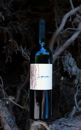 Bacio Divino Cellars 2014 'Janzen' Cloudy's Vineyard Napa Valley Cabernet Sauvignon 750ml Wine Bottle