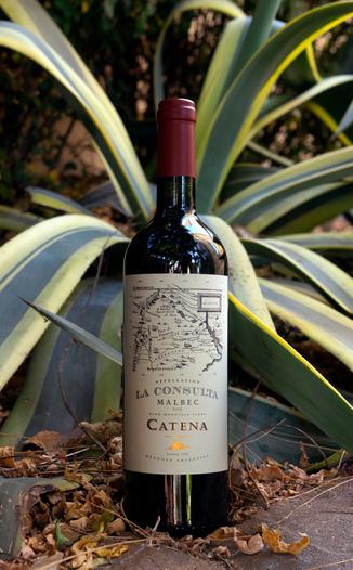 Bodega Catena Zapata 2015 High Mountain Vines La Consulta Mendoza Malbec 750ml Wine Bottle
