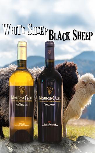 Baron Philippe de Rothschild 2016 Mouton Cadet Réserve Graves Blanc & St-Émilion 2 Pack 750ml Wine Bottle