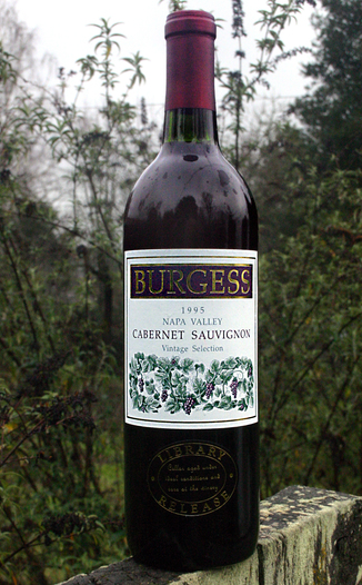 Burgess Cellars 1995 Napa Valley Cabernet Sauvignon 750ml Wine Bottle