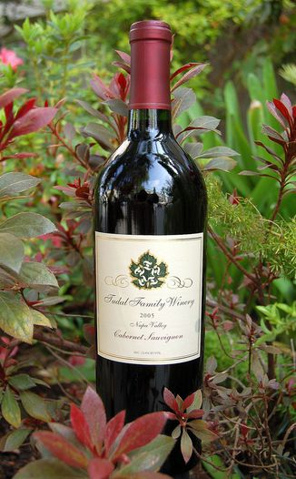 Tudal Family Winery 2005 Tudal Family Cabernet Sauvignon 750ml Wine Bottle