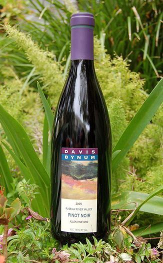 Davis Bynum Winery 2005 Russian River Valley Pinot Noir 750ml Wine Bottle