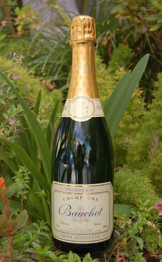 Bauchet Pere & Fils NV Brut Selection Premier Cru 750ml Wine Bottle