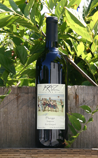 Kaz Winery 2005 Plunge - Sangiovese 750ml Wine Bottle