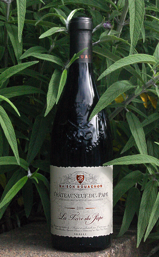 Skalli Grand Vin du Rhone 2006 La Tiare du Pape 750ml Wine Bottle
