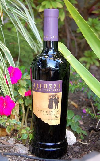 Jacuzzi Family Vineyards 2005 Nebbiolo 750ml Wine Bottle