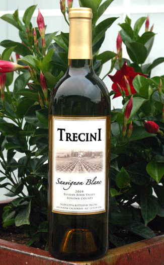 Trecini Cellars 2008 Sonoma County Sauvignon Blanc 750ml Wine Bottle