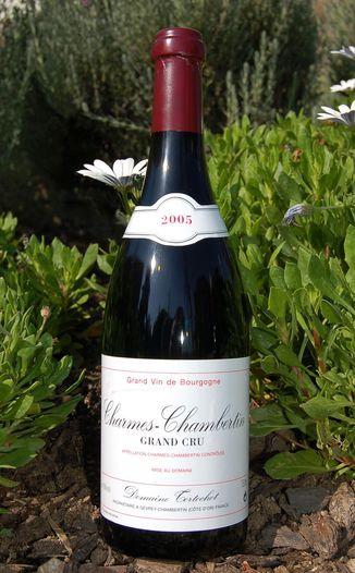 Domaine Tortochot 2005 Charmes-Chambertin Grand Cru 750ml Wine Bottle