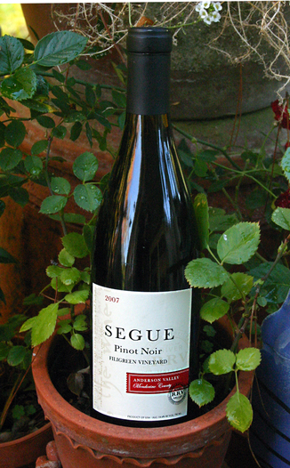 Segue Cellars 2007 Anderson Valley Pinot Noir 750ml Wine Bottle