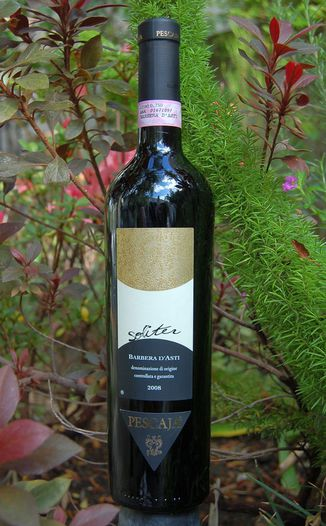 Az. Agr. Pescaja 2008 'Soliter' Barbera d'Asti DOCG 750ml Wine Bottle