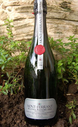 Reserva Mont-Ferrant 2004 Blanes Nature Brut Extra Cava 750ml Wine Bottle