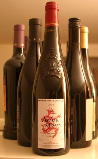 Domaine Patrick Baudouin 2003 Anjou Villages 750ml Wine Bottle