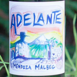 Adelante 2013 Malbec Mendoza 750ml Wine Label