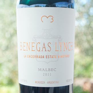 Benegas Lynch 2011 Mendoza Malbec 750ml Wine Label