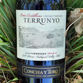 Concha y Toro 2014 Cachapoal Valley Terrunyo Peumo Carmenere 750ml Wine Label