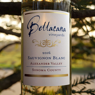 Bellacana Vineyards 2016 Alexander Valley Sonoma County Sauvignon Blanc 750ml Wine Bottle