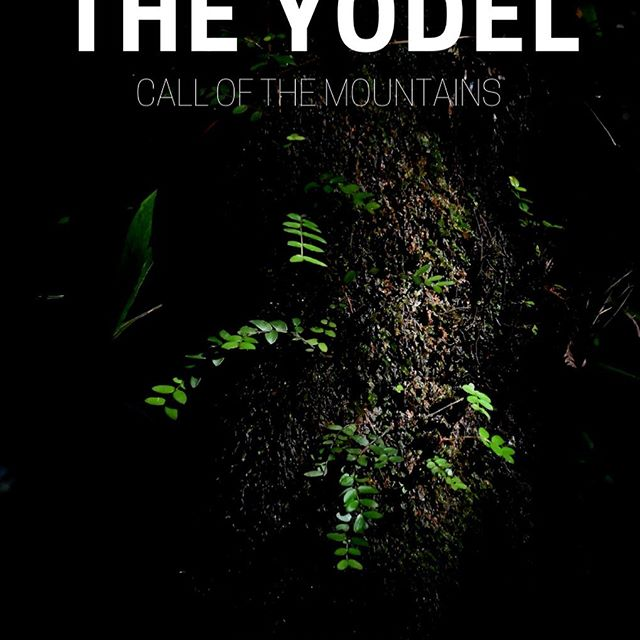 The Yodel is back, dropping tomorrow! A New Zealand-inspired edition from an incredible trip getting some winter in the Southern Hemisphere. Featuring: The Benefits of Being Unusual, more Q&A, Zen and the Art of Guiding and more. Link in bio to grab it  #weliveforthis #theyodel #apresskistories  @jeffgertsch