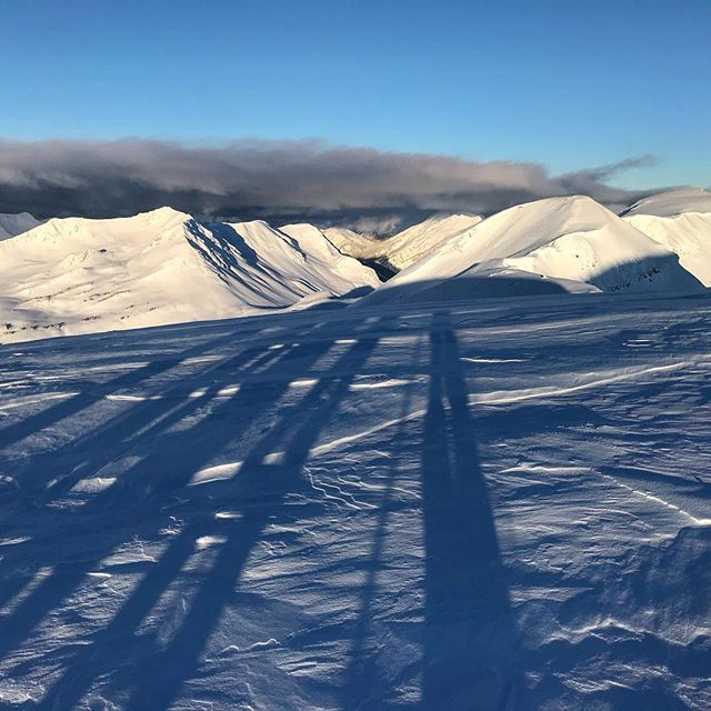 Casting some long January shadows. Is it just me, or can we finally feel the days getting longer? #lovewinter