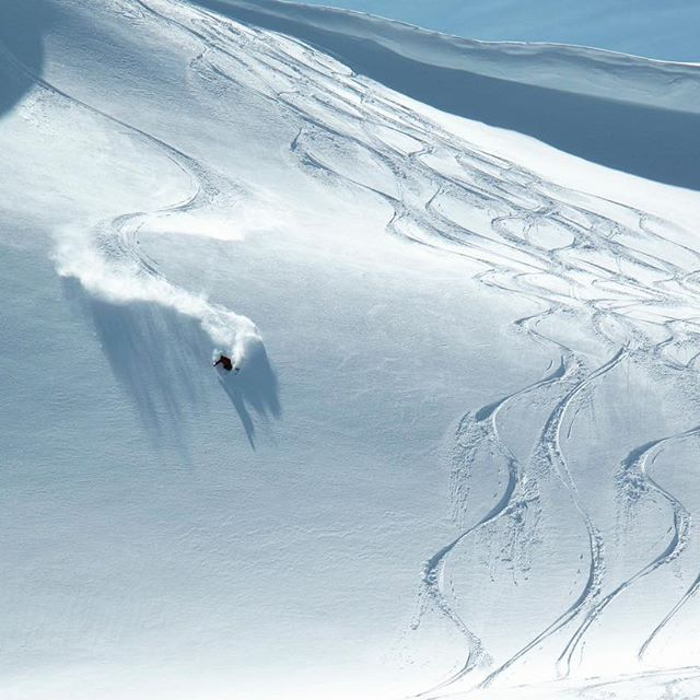 Days like these.... We are having NO fun out there at all!  #heliskiing #bigalpinelines #blowerpow #februarylove