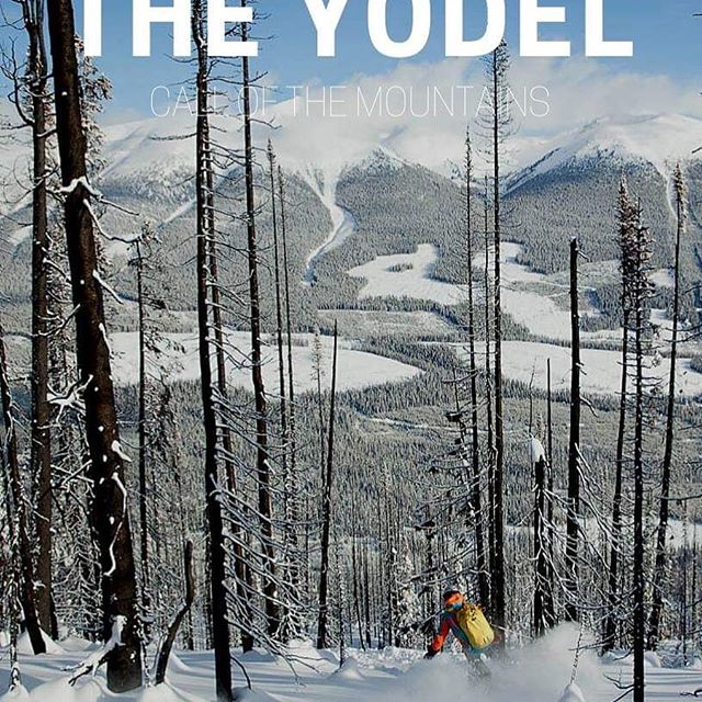 #TheYodel is back tomorrow!  This issue: Riding Shotgun - The Journey To The Front Of The Group, Last Chance for 2020 Promo, and your March Desktop Calendar.  Link in bio to snag yours   #lovethebackcountry #heliskiing #getoutside  @dibbledibble