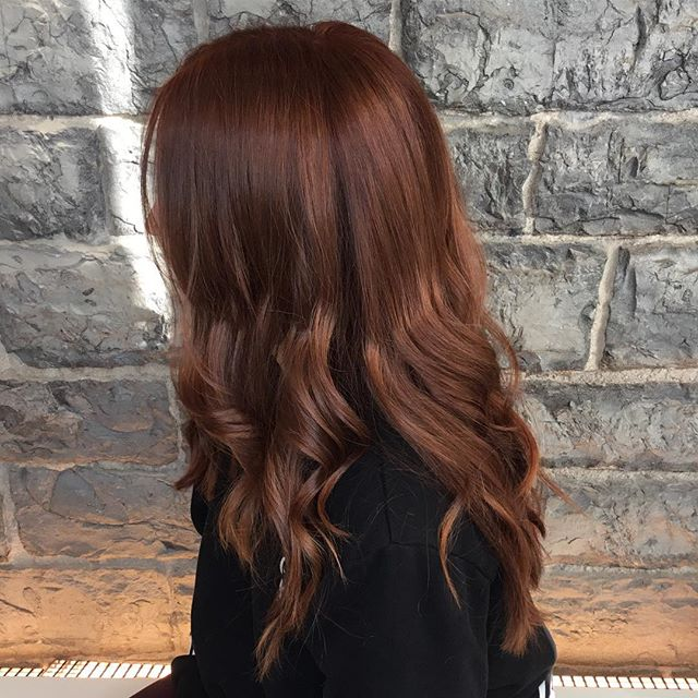 Beautiful copper created by new talent stylist @hairby_logan !!!  • • • #gingerhair #ginger #copperhair #colourmelt #ygk #ygkhair #ygkhairstylists #queensu #slc #rmc