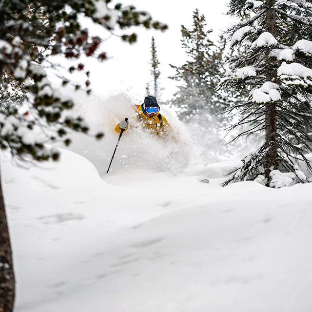 Dreaming of December deepness.️ @jeffgertsch @hellyhansen  @mountainmancole #waybackwednesday #deeppowder #bcbackcountry