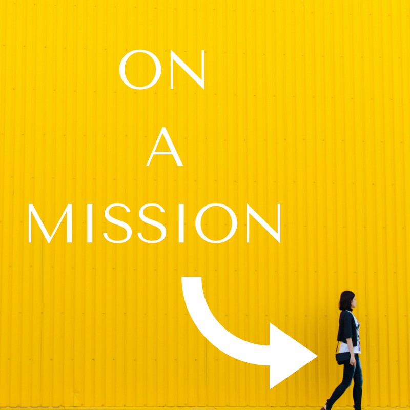 Are you on a mission to achieve success?