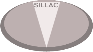SILLAC Training for Chemical Management Regulatory Specialization in Latin America & The Caribbean (LAC)