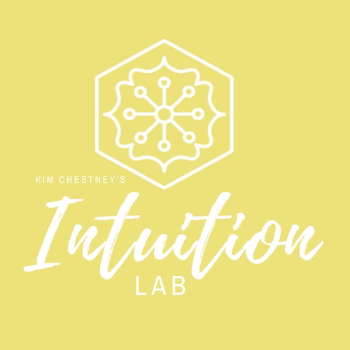 Intuition Lab