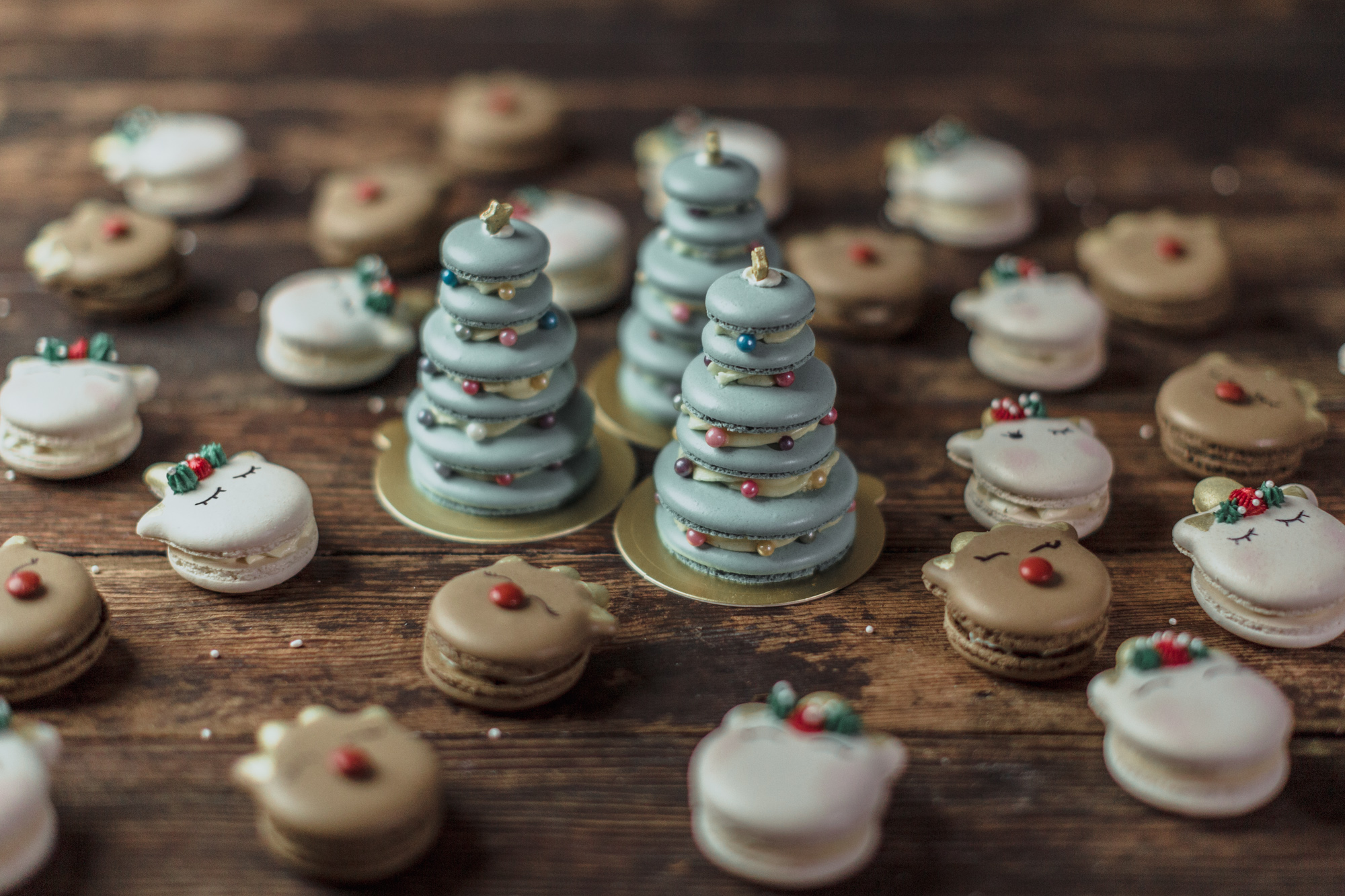 From basic macaron to spectacular Christmas characters