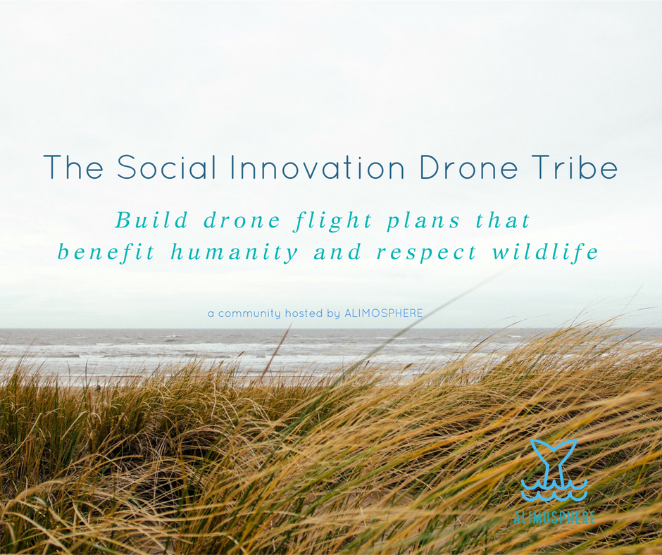 The Social Innovation Drone Tribe