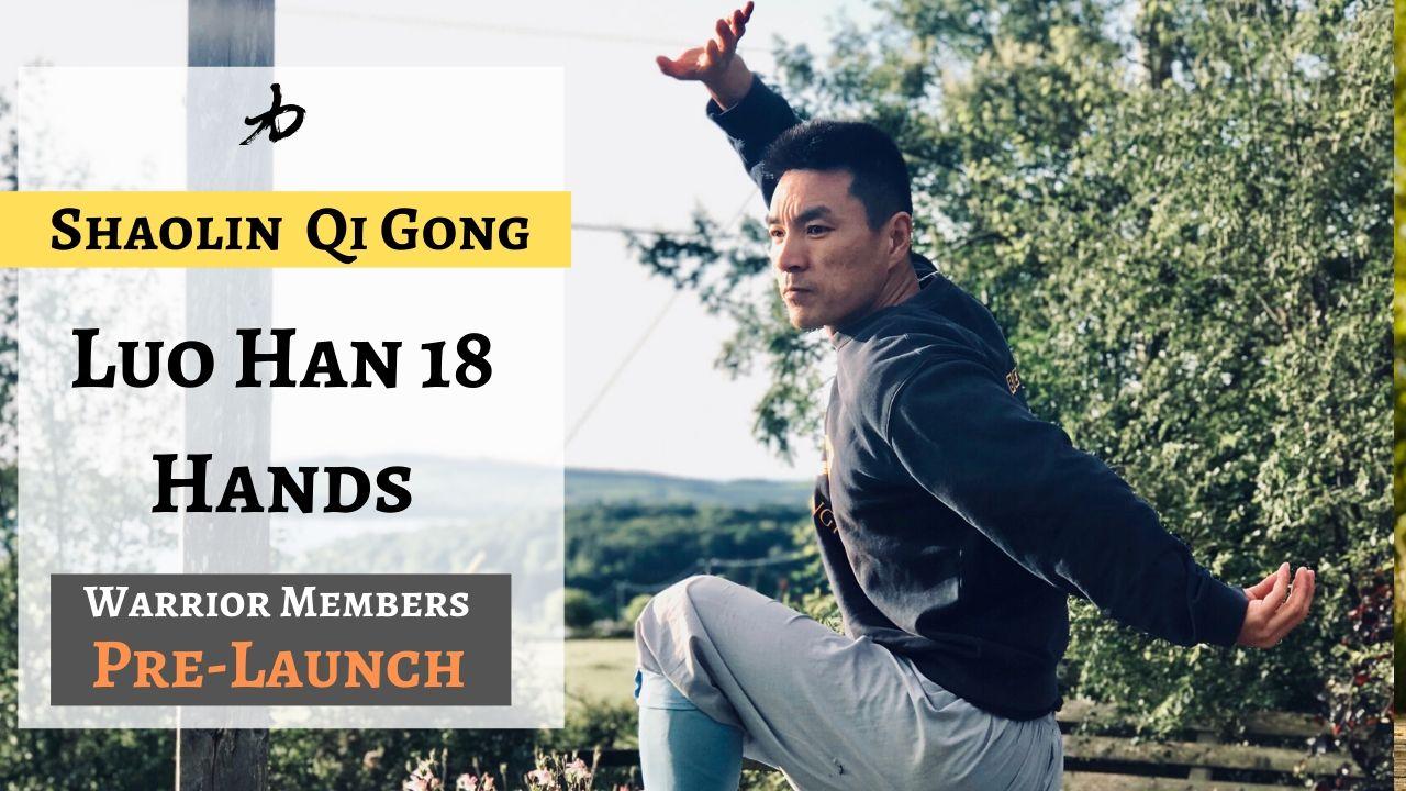 Qi Gong - Sholin Luo Han 18 Hands | Pre-Launch