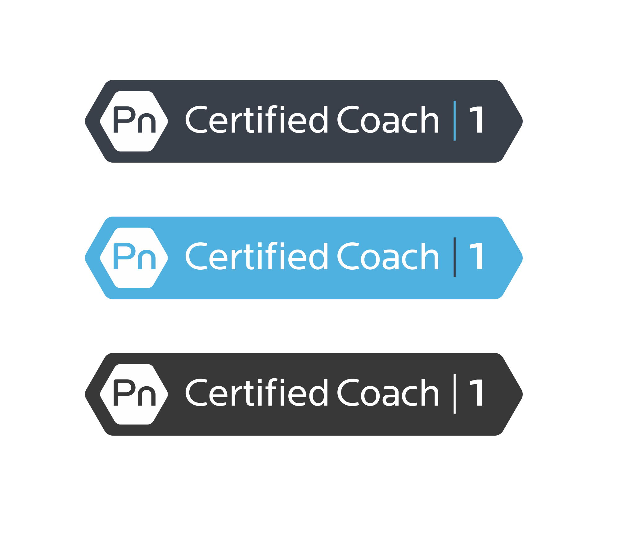 Precision Nutrition Certified Coach