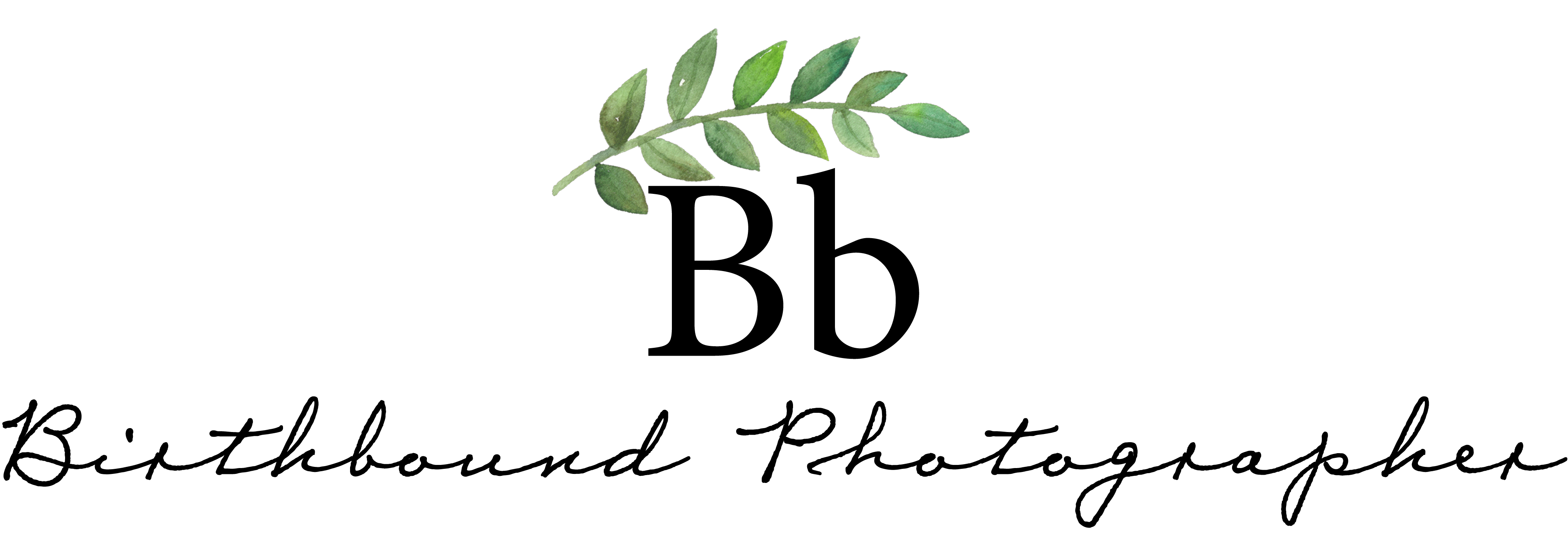 Birthbound Photographer Online Classes