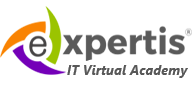 IT Virtual Academy