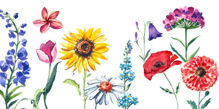 FLOWERS ($15)