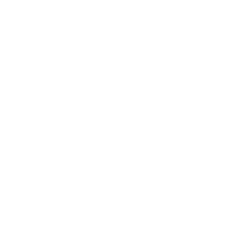 The Brand Solutions Academy