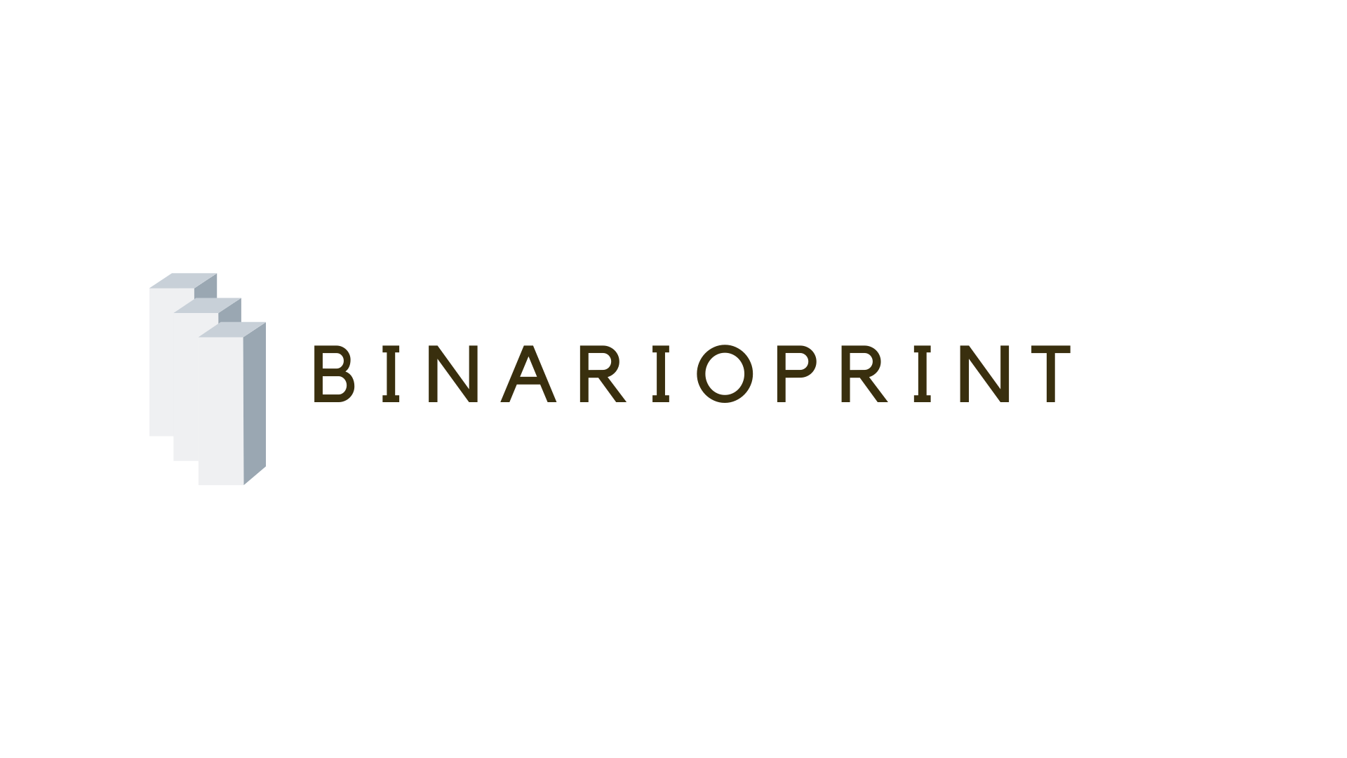 Binarioprint Academy