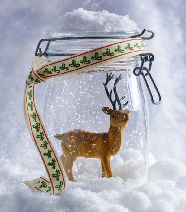 reindeer in a jar